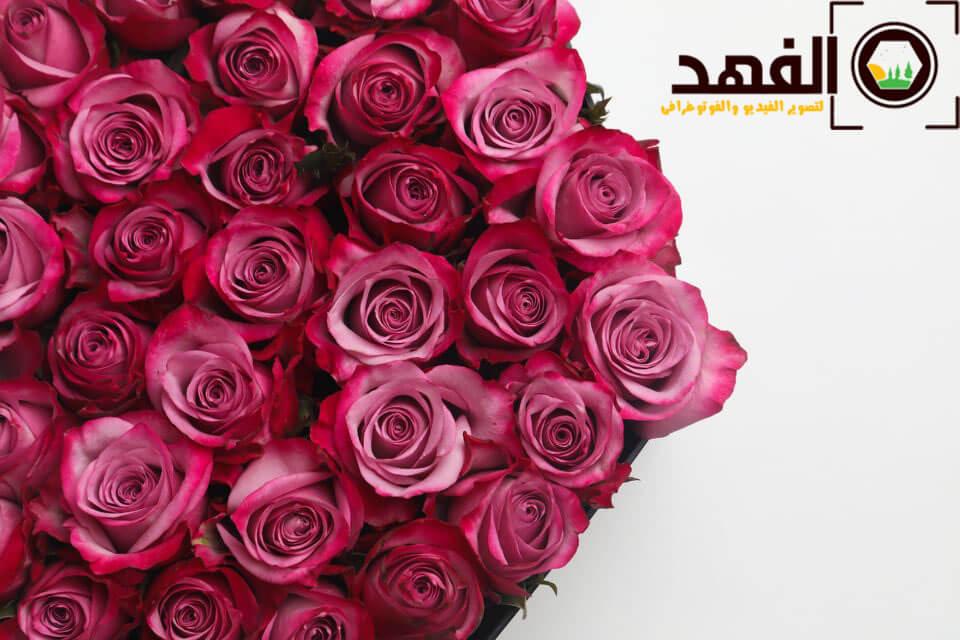 هدية من الورد